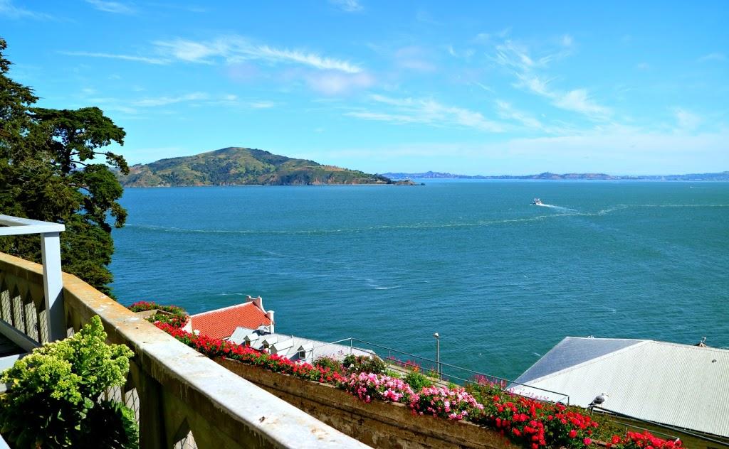 Surprising beauty when visiting Alcatraz Island