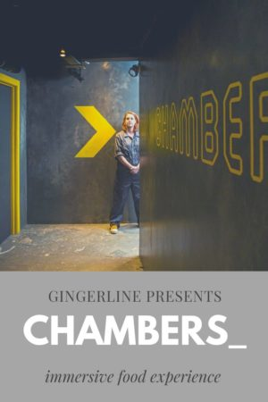 Chambers_ by  Gingerline pinterest pin